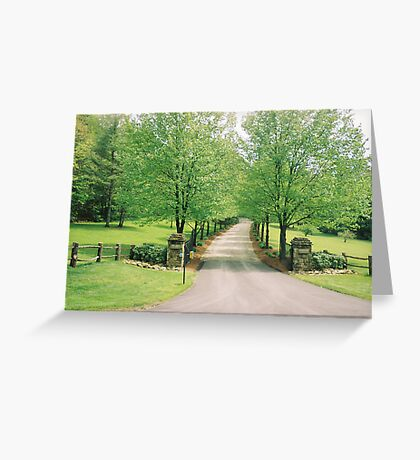 pretty lane Greeting Card