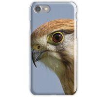 Nankeen Kestrel Head shot iPhone Case/Skin