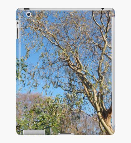 Scenic Trees iPad Case/Skin