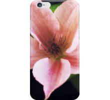 Clematis Pink Fantasy iPhone Case/Skin