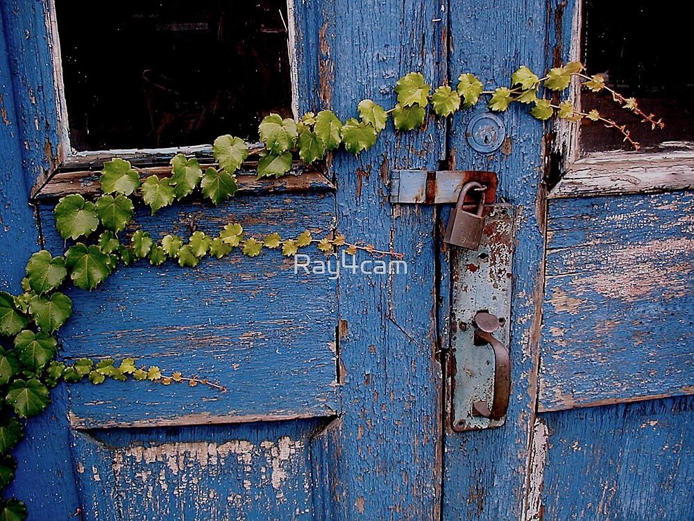 Blue Door by Ray4cam