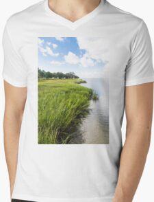 Wetland Grasses Mens V-Neck T-Shirt