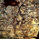 Riverside Reflections II by Stephen Johns