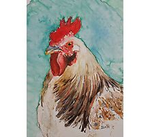Chick Magnet Photographic Print