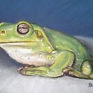 I'm Froggy and I know it! by Dianne  Ilka