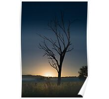 Dawn Silhouette Poster