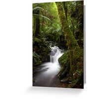 Mossy Tree Greeting Card