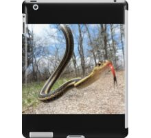 Silly Willy Nilly Snake iPad Case/Skin