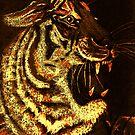 A Tigers Fire by Dawn B Davies-McIninch
