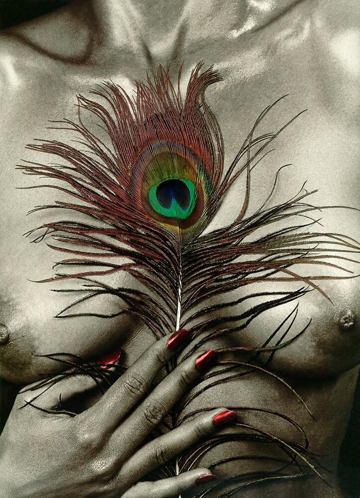 Feather 01 by nixa