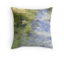 Is this a lovely reflection of trees in a mountain river?  Or is it . . . Throw Pillow