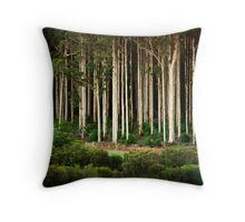 Big Brook Forest Throw Pillow