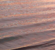 Sunny Sunset Ripples by Martice
