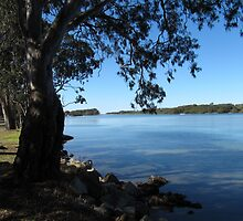 Camden Haven Inlet, New Haven, Greater Port Macquarie, N.S.W. by Rita Blom