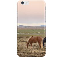 Kings Of The Nordic Twilight iPhone Case/Skin