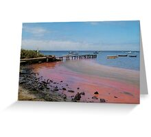 the day the red algae came to the bay Greeting Card