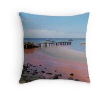 the day the red algae came to the bay Throw Pillow