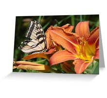 ButterflyLily - Open & friendly Greeting Card