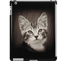 Frodo Kitten iPad Case/Skin