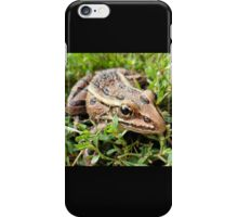 Brown Frog in the Grass - Nature and Wildlife Photography iPhone Case/Skin