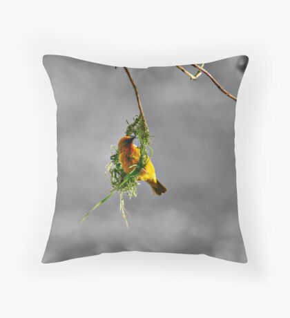 Fickle Finch Throw Pillow