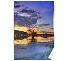 Lone Tree too Poster