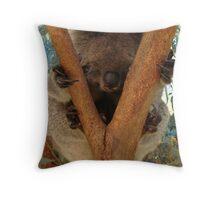 Koala taking a nap Throw Pillow