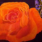 Orange Rose still life oil painting by coolart