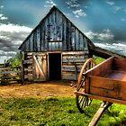 Summer at the Barn Yard by Shante' Mathes