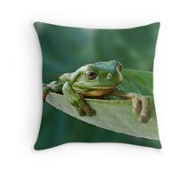 Hammock for a Frog Throw Pillow