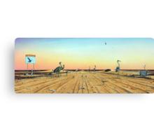 Birdsville Track Canvas Print