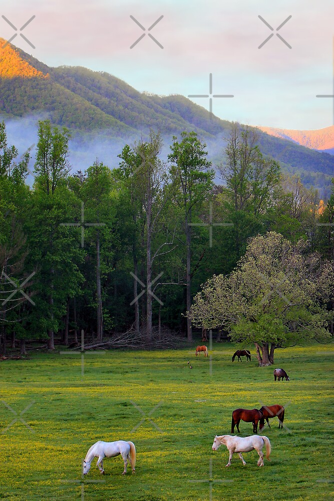 Morning Graze by Lisa G. Putman