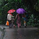 Indian Family in the Park on a Rainy Day by Christian Eccleston