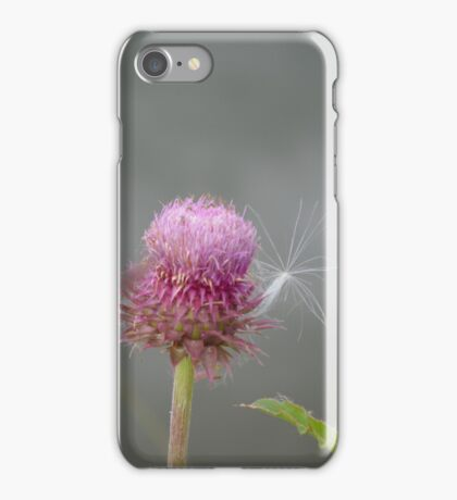 Thistle and fluff iPhone Case/Skin