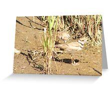 Mud Runners Greeting Card