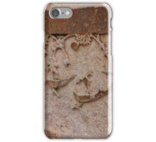 Jahangir's Bath iPhone Case/Skin