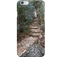 Path to the Lookout iPhone Case/Skin