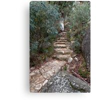 Path to the Lookout Canvas Print