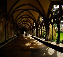 Salisbury Cathedral - Cloisters And Cloister garth.  by delros