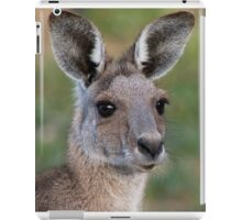 Eastern Grey Kangaroo Portrait iPad Case/Skin