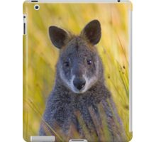 Lonely Swamp Wallaby 1 iPad Case/Skin