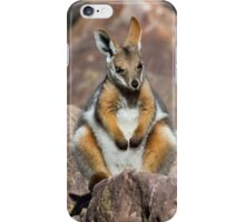 Yellow-footed Rock Wallaby 2 iPhone Case/Skin