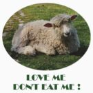 Love Me  Dont Eat Me by Elaine  Manley