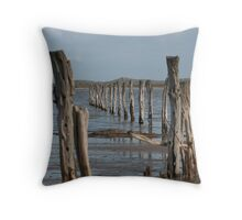 Coorong remembering..... Throw Pillow