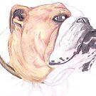 British Bulldog by disorder