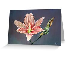 Blooming, Decay and New Beginning Greeting Card