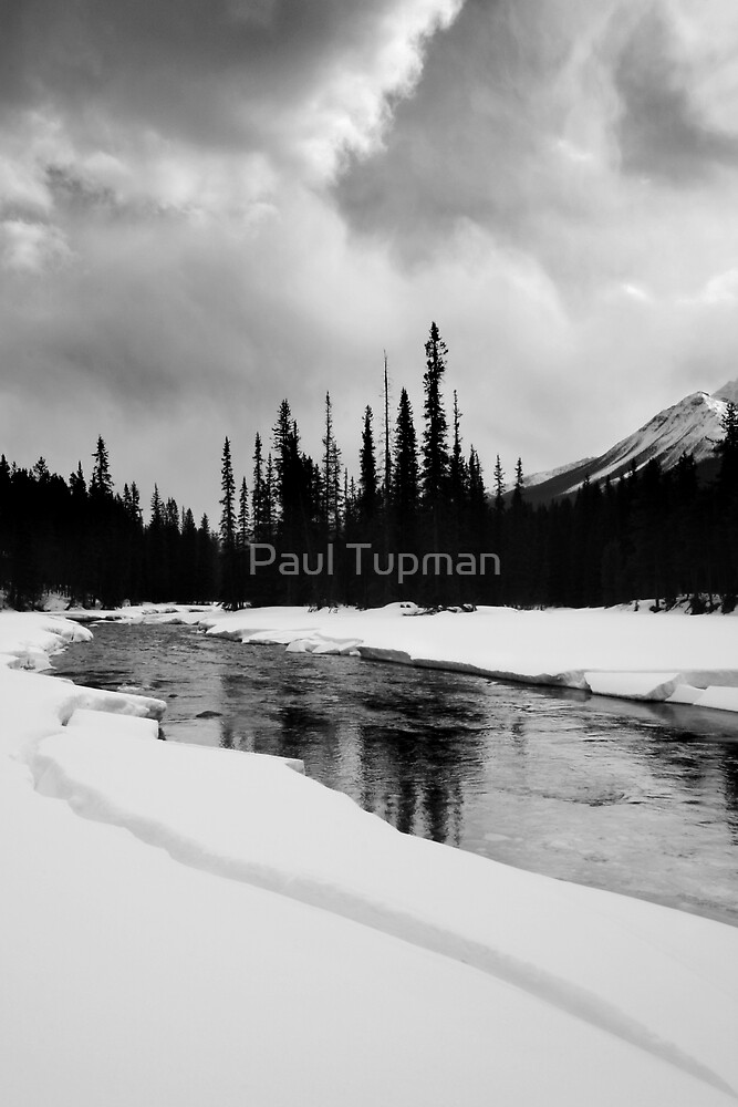 Divided by Paul Tupman