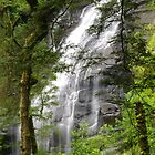 Triplet Falls Great Otway NP by Bette Devine