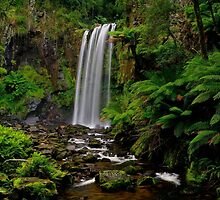 Hopetoun Falls by Bette Devine