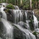 Toorongo Falls (2) by Bette Devine